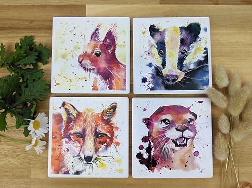 Ceramic Coaster set of 4 British Wildlife Collection #202053