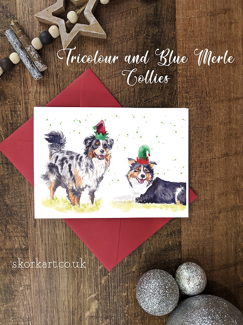 Christmas Card Tri colour and Merle Border Collies Watercolour, A6