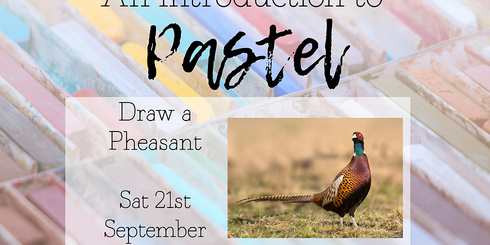 An intro to Pastel, Pheasant Sat 21st September