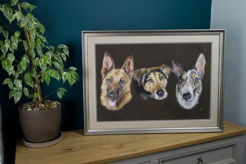 triple portrait.jpg