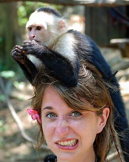 monkey-mind.png
