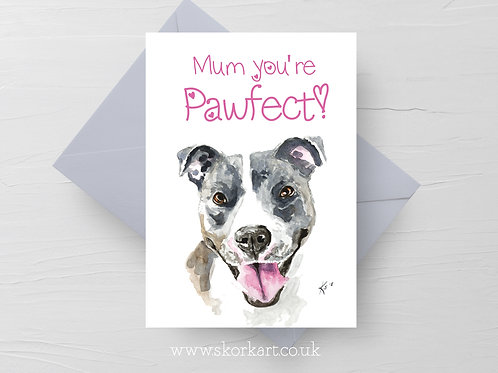 Mum you're Pawfect! Blue staffy Mothers Day Card #202040