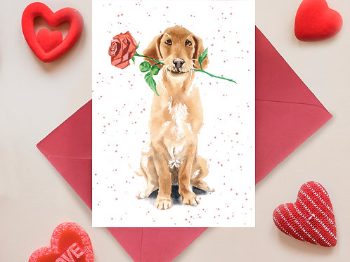 Puppy love, Cute, Golden Lab, Love Greetings Card
