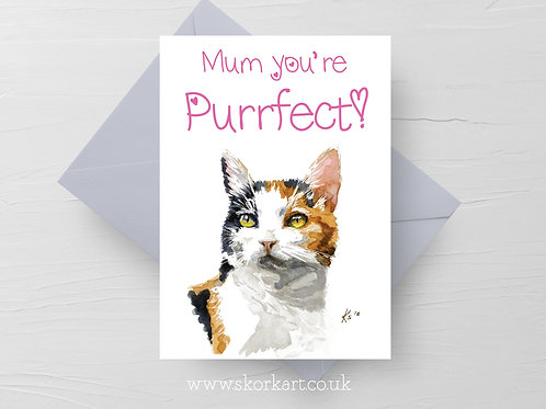 Purrfect Mothers Day Card #202017