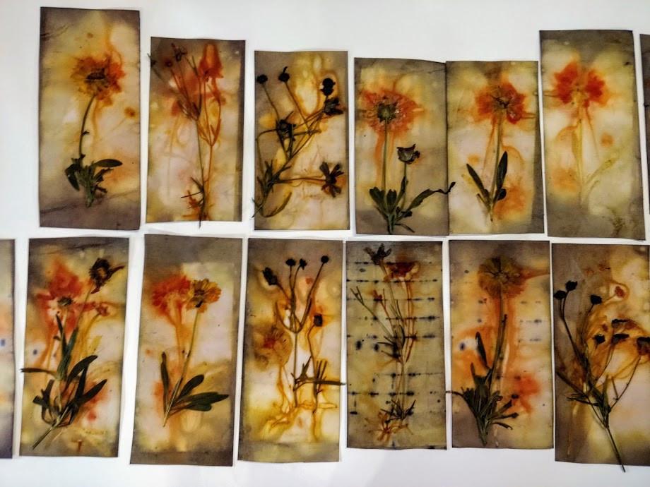 Ecoprint cards.jpg