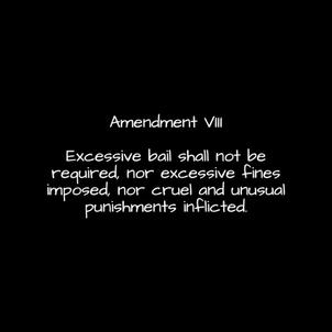 Amendment-8.png