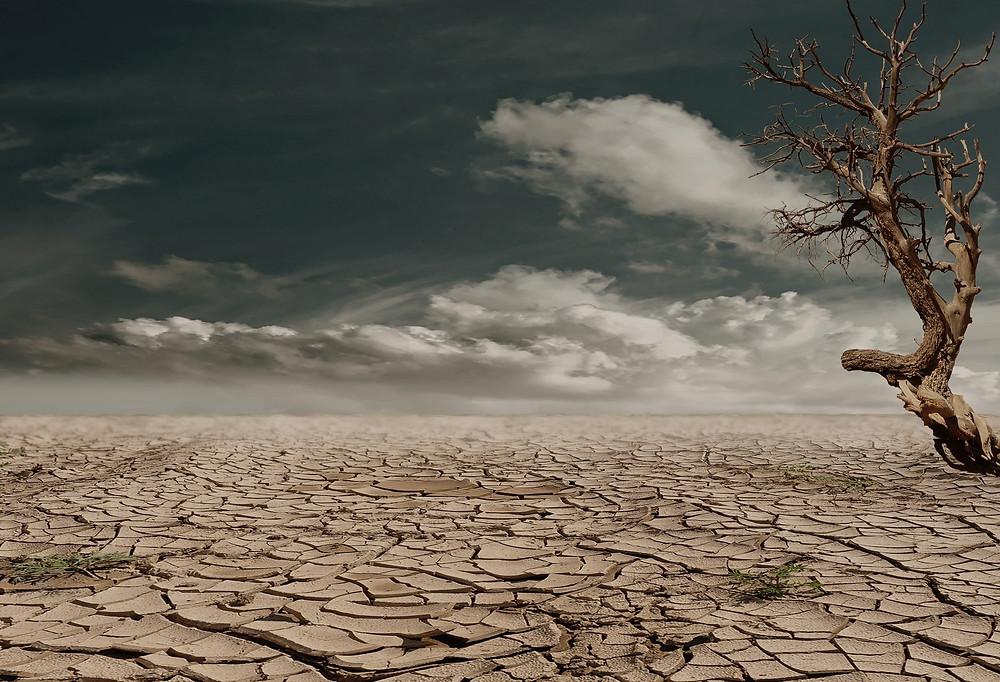 Dry arid region of earth