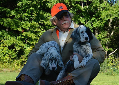Legh Higgins with English Setter pups