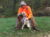 Legh Higgins, English Setter