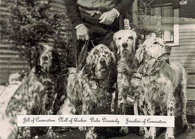 Twombly Setters from 1940