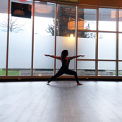 Dana Carter Warrior 2 yoga pose.jpg