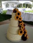wedding cake #9.jpg