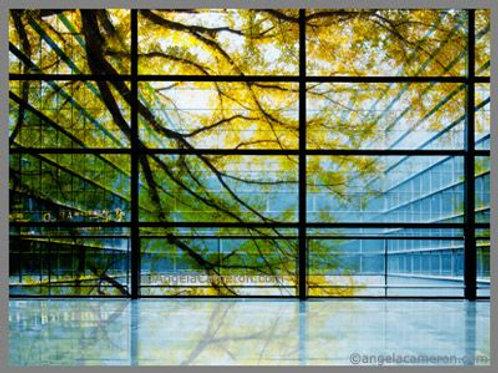 printonlinestore window glass decals