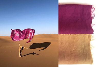 rose desert.jpg