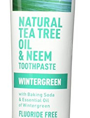 FAVORITE THING ALERT!  Desert Essence Tea Tree and Neem Toothpaste