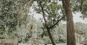 Florida Springs Engagement | Orlando, Florida