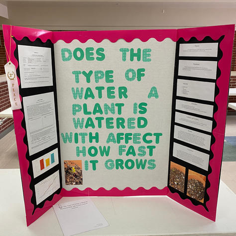 Does the Type of Water a Plant is Watered With Affect How Fast it Grows?