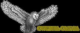 Owlpha Omega Logo