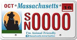 animal license plate.jpg