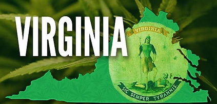 Virginia Cannabis Consulting .png