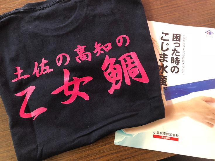 土佐の高知の乙女鯛Tシャツ!(旧パンフレット付)