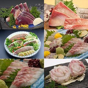 お魚定期便 画像.jpg