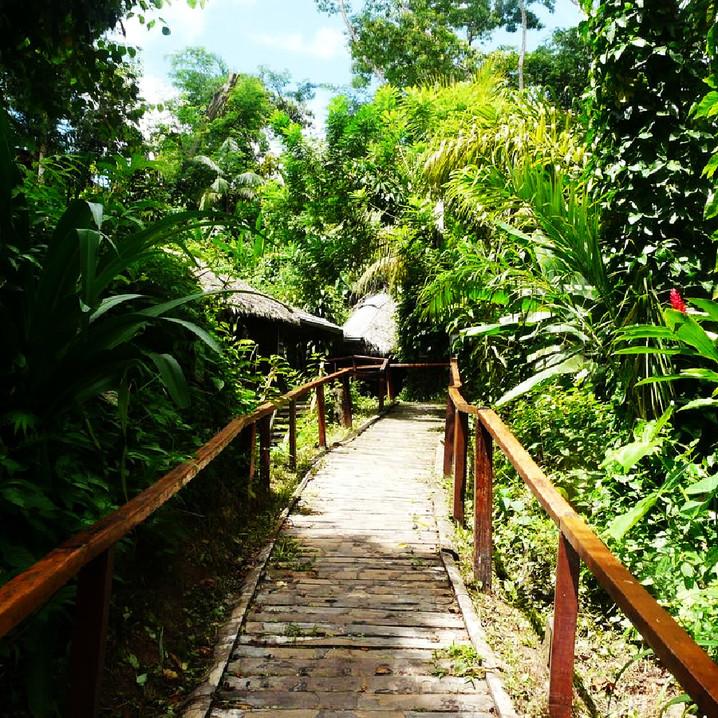 Puerto Maldonado - Jungle Lodge-2.jpg