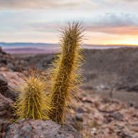 Atacama Desert-3.jpg