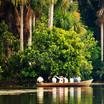 Puerto Maldonado - Jungle Lodge-3.jpg