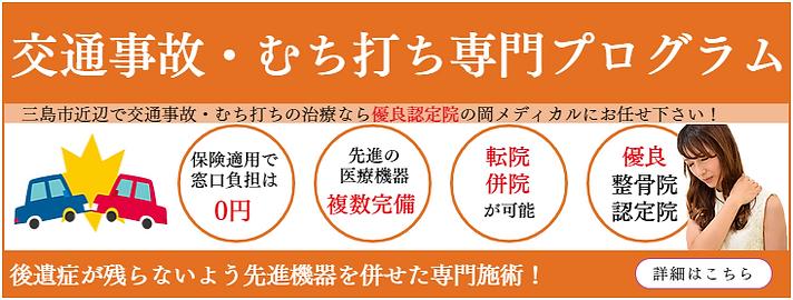 交通事故ムチウチ専門プログラム.png