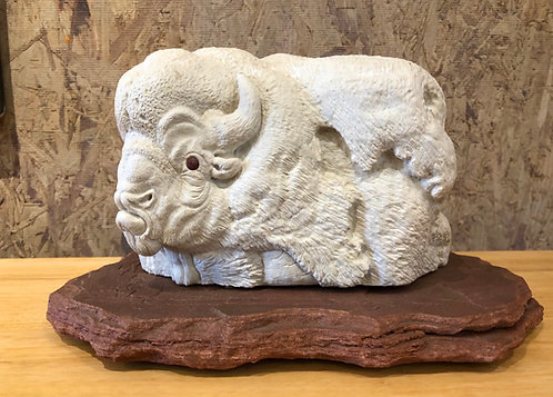 Sacred White Buffalo