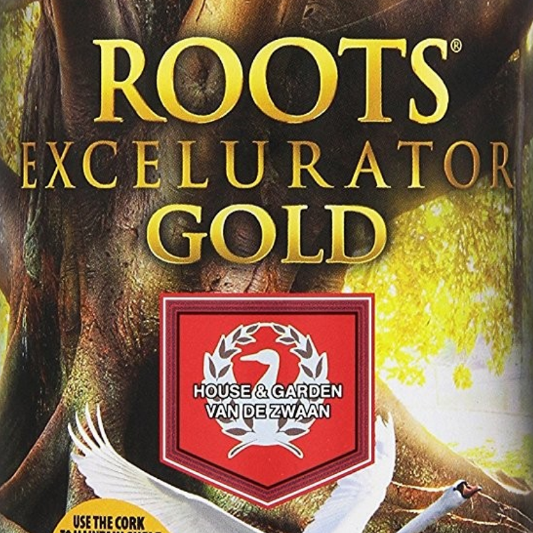 1-Roots_Gold.png