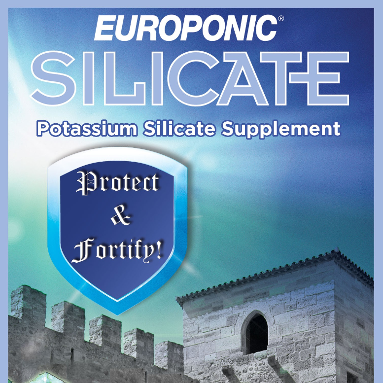 1-Europonic_Silicate.png