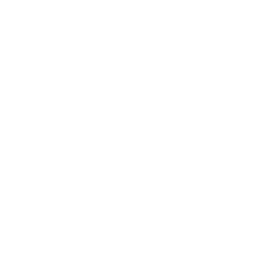 icon-bandsintown