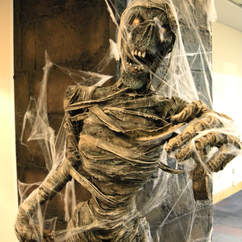 Horror Theme Skeleton