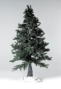 Frosted Fir Tree
