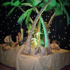 1744 - Palm Tree Island.JPG