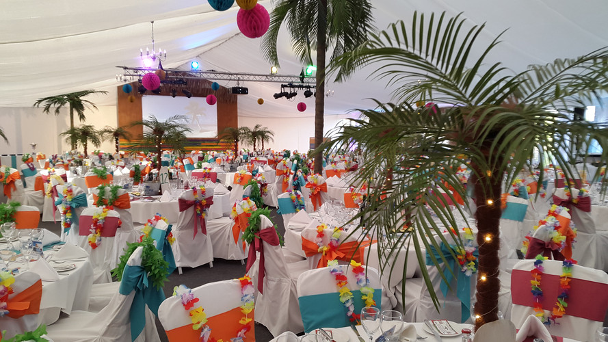 Palm Tree Hire - Staging Services