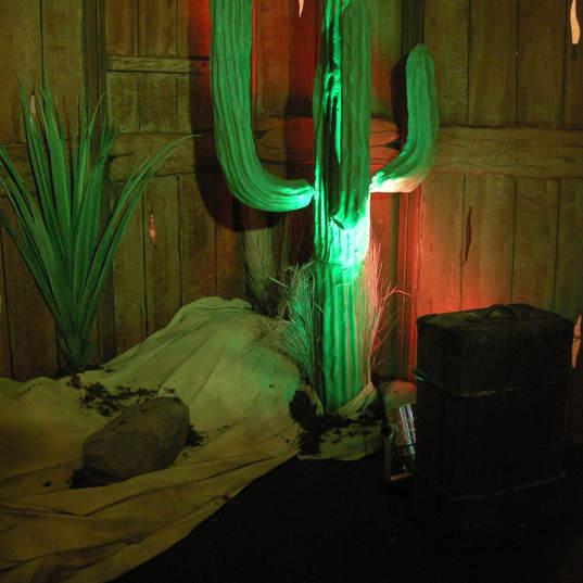 Cactus Prop Hire