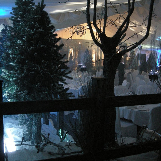 Winter Wonderland Event Theming