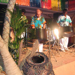 Palm Trunk & Steel Band
