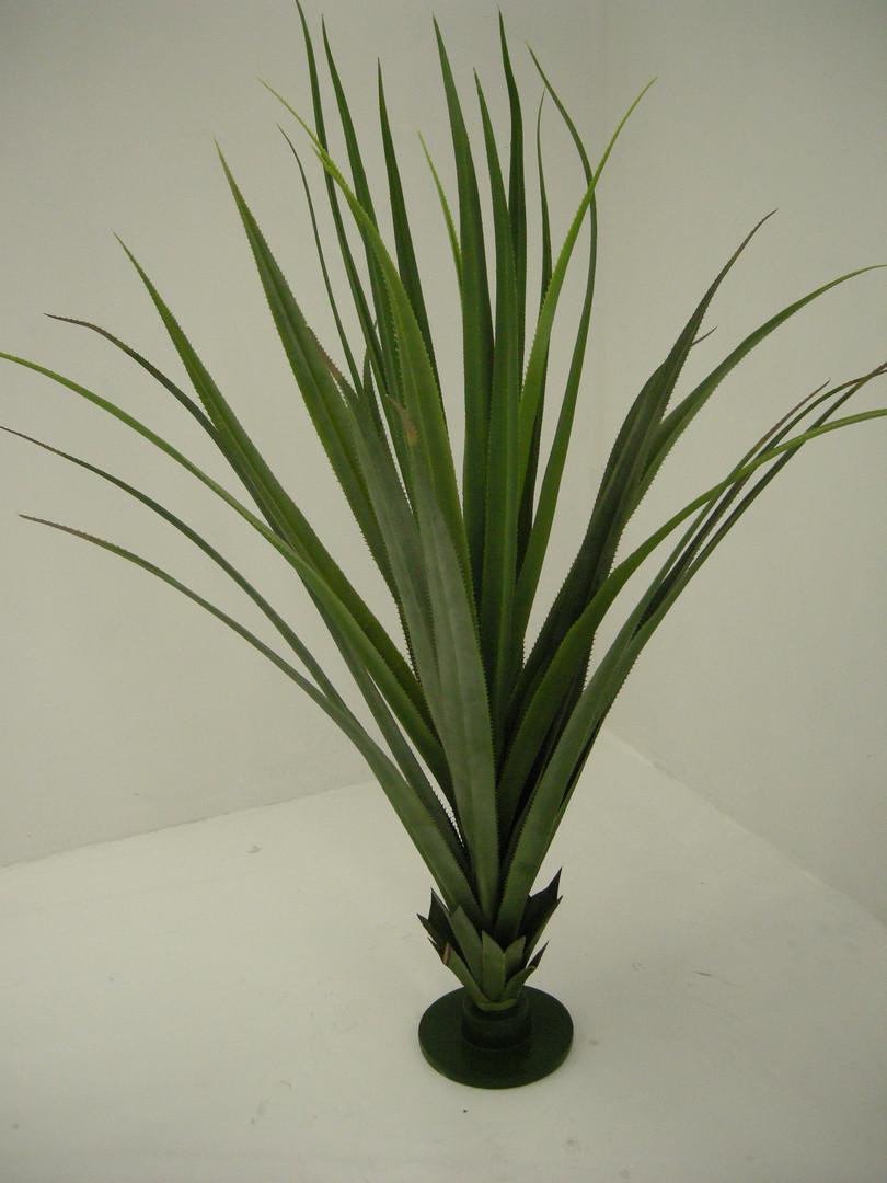 Aloe Vera Plant Prop Hire - Staging Services