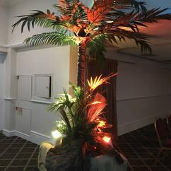 Lit Palm Tree Entrance Feature