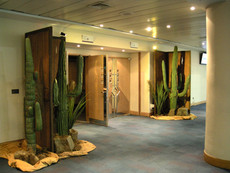 Cactus Prop HIre - Staging Services