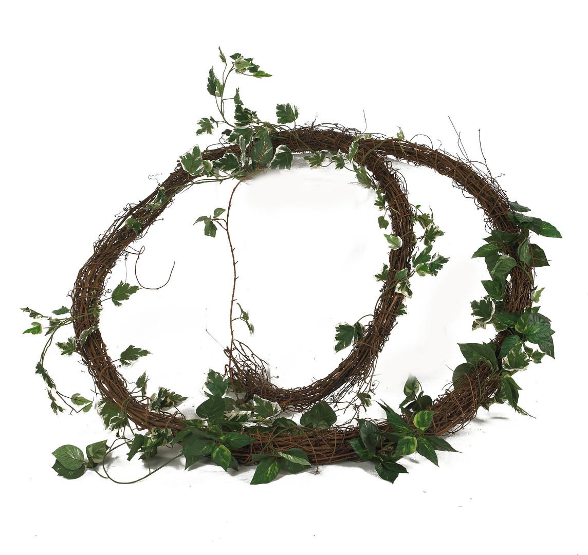 Jungle vine - prop hire - staging services
