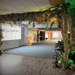 Entrance Jungle Themes & Props