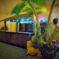 Wooden Jungle Bar Hire