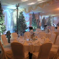 DSWinter Party Event Theming