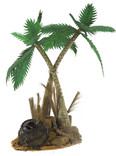 Jungle palm tree prop hire - staging services
