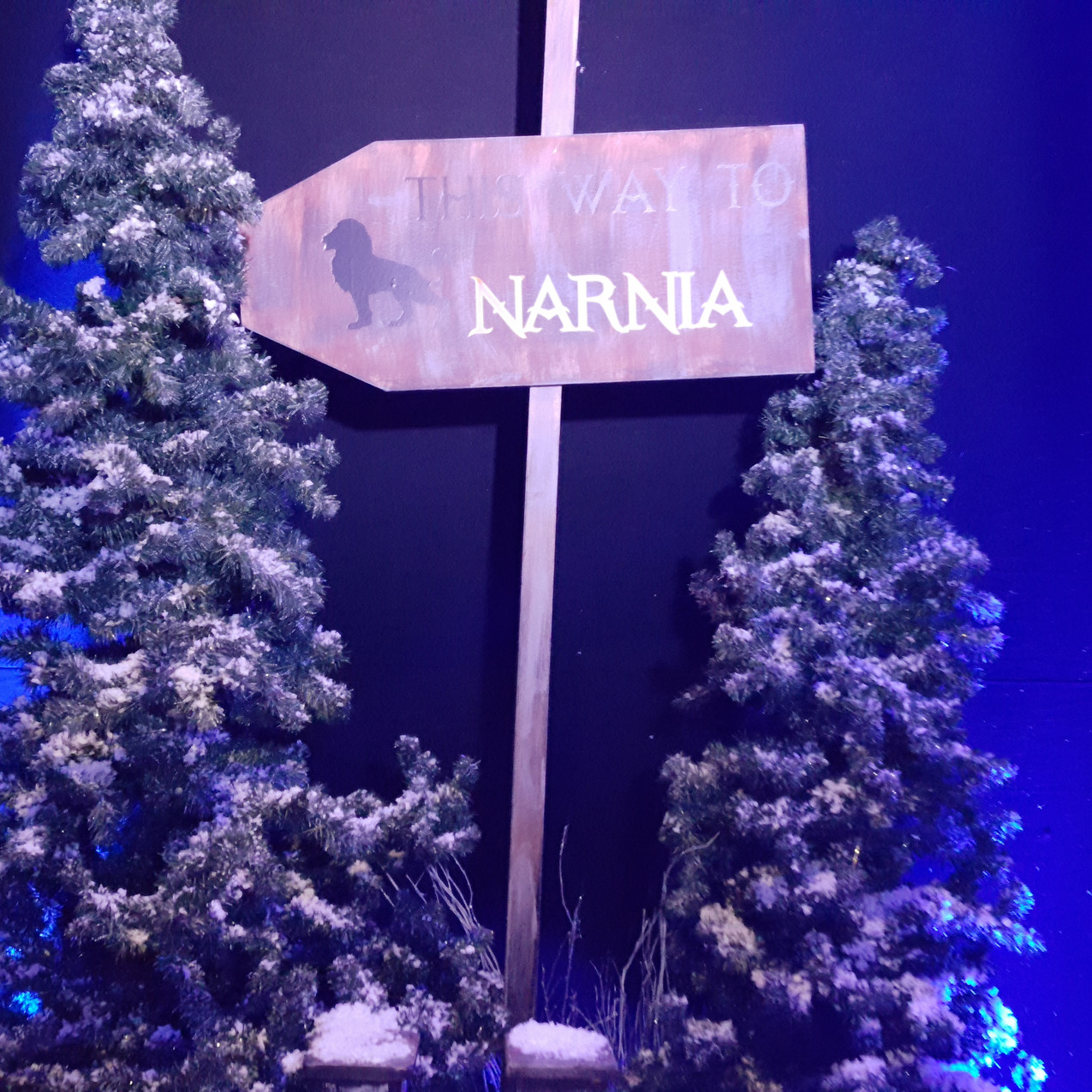 Narnia Themes/Props Staging Services